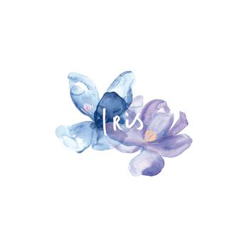 Iris 04