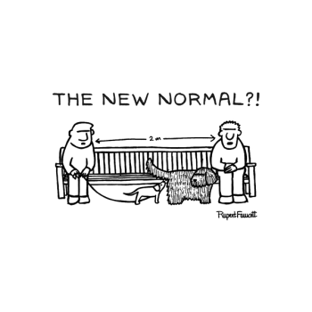 The New Normal?!